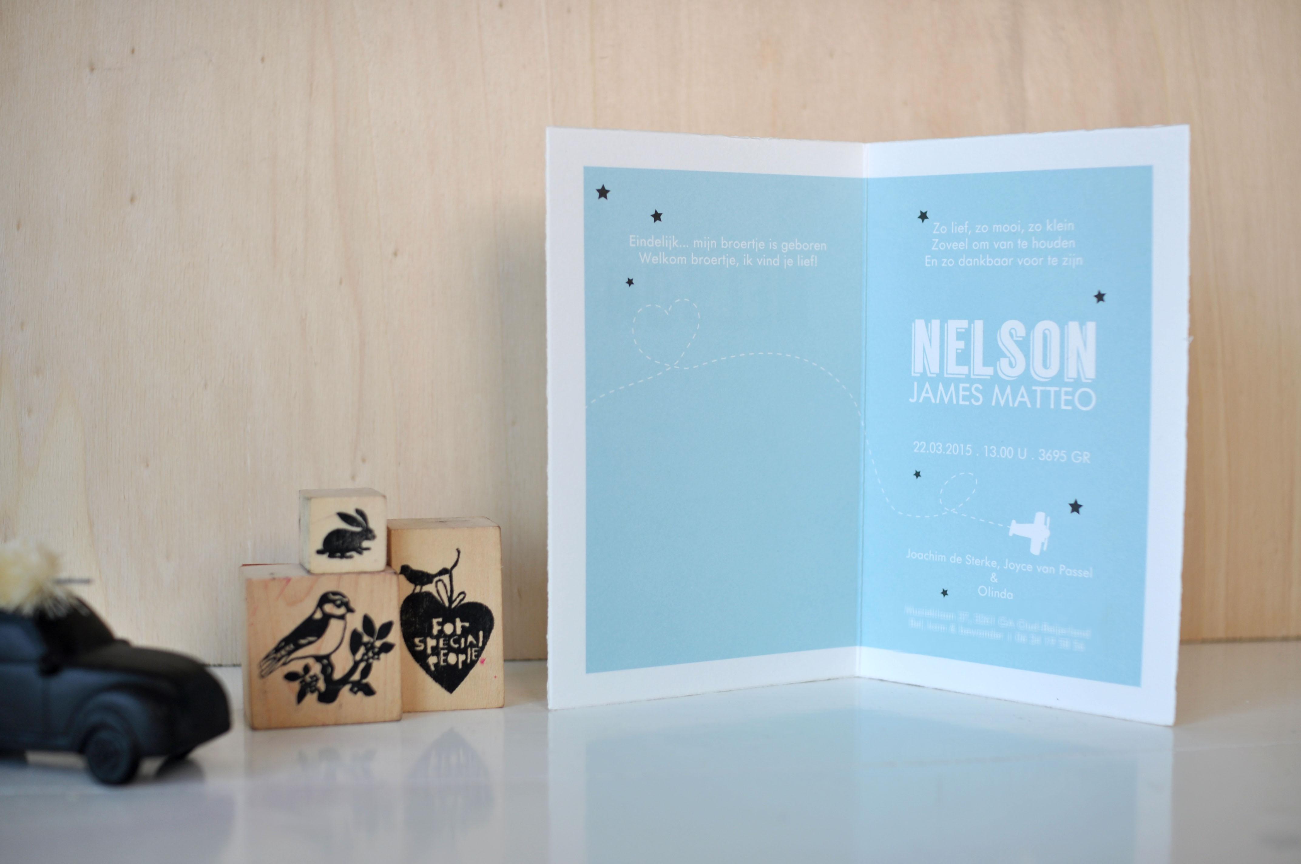 Geboortekaartjes Oud Hollands Nelson