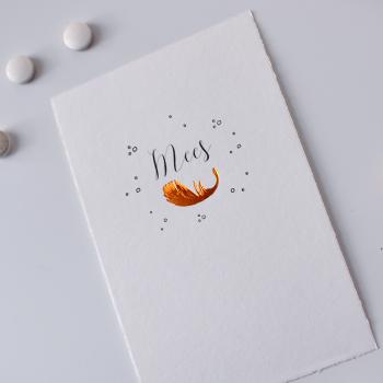 Geboortekaartje met folie - veertje koper - zwart wit